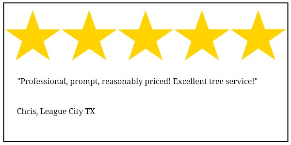 League City tree service 5 star review