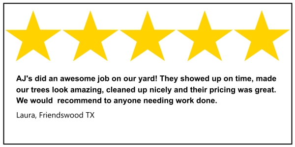 Friendswood tree service 5 star review