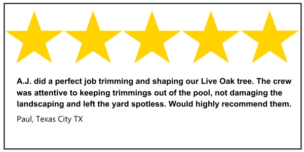Texas City tree service 5 star review