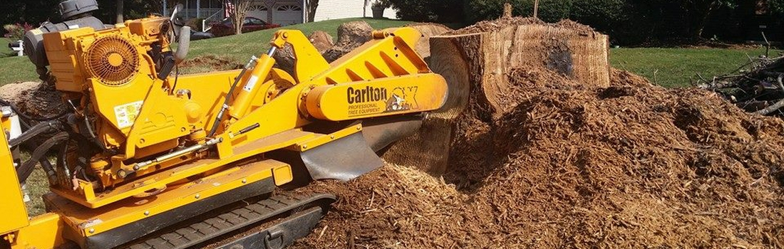 stump grinding League City TX